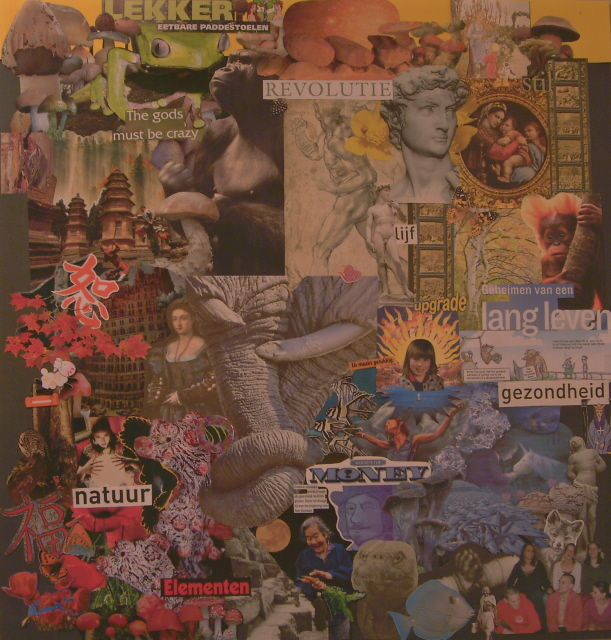Vision Board by Myrna van der Molen.