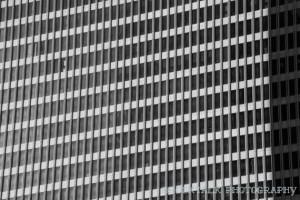 Office Building by Brock Lindeke.