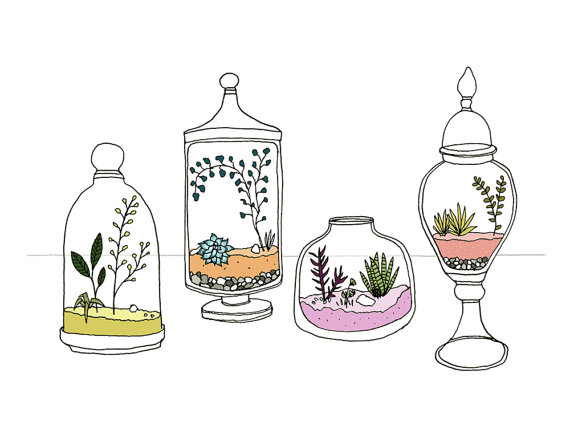 Terrariums by Sloe Gin Fizz