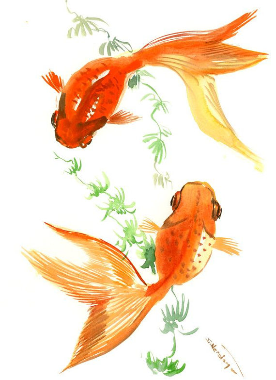 Two Goldfish by Suren Nersisyan