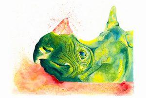Javan Rhino by Stacey Grove