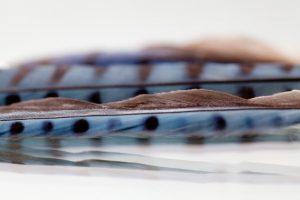 Blue Jay Wave by Kim Clark