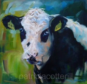 Moo by Patricia Cotterill.