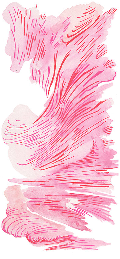 Pink Abstract by Elena Blanco