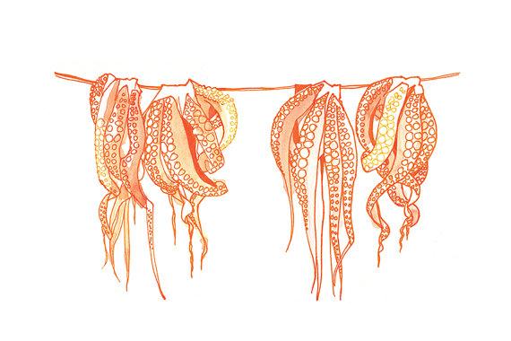 Octopus by Cat Ferraz
